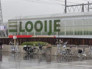 Jalan-jalan Naaldwijk