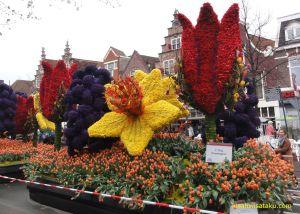 wisata belanda bloemencorso