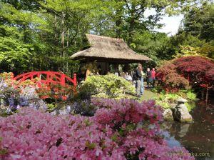 Wisata taman Jepang di Belanda