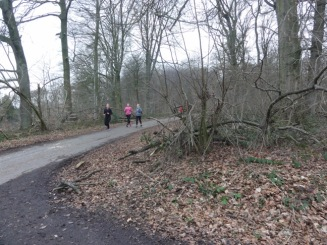 Penggemar jogging